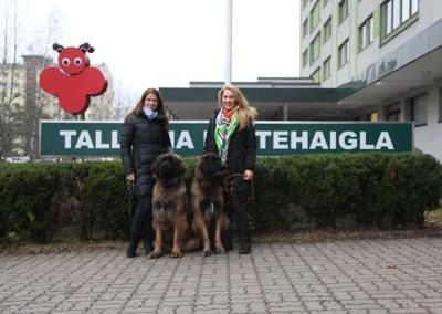 SA Tallinna Lastehaigla külastuskoerad
